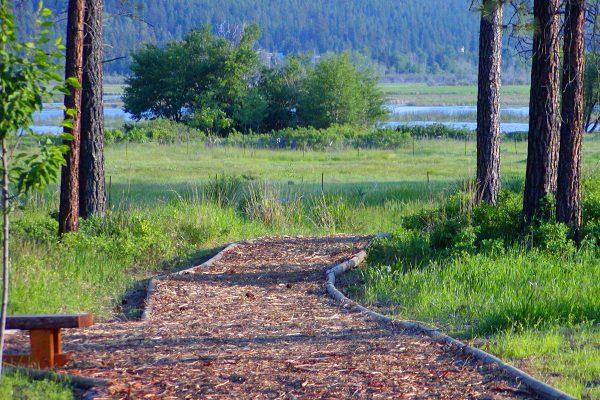 Trails-from-Elizabeth-Lake-Lodge-Cranbrook